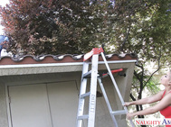 Bridgette asked Ryan to come over and help her with the roof of her shed.